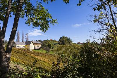 Europe, Austria, Styria, South-Styrian Wine Route, Vineyards, Houses-Gerhard Wild-Photographic Print