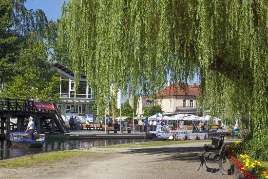 Europe, Germany, Brandenburg, Spreewald (Spree Forest), L?bbenau, Harbour Promenade, Weeping Willow-Chris Seba-Photographic Print