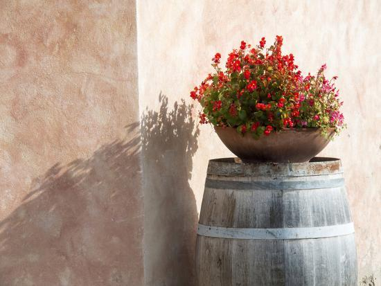 Europe, Italy, Tuscany. Flower Pot on Old Wine Barrel at Winery-Julie Eggers-Photographic Print