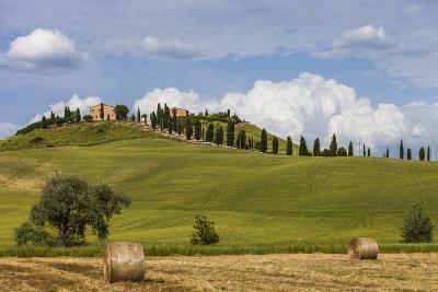 Europe, Italy, Tuscany, Landscape in Le Crete-Gerhard Wild-Photographic Print