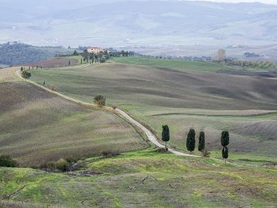 Europe, Italy, Tuscany. Tuscan Landscape in Autumn-Julie Eggers-Photographic Print