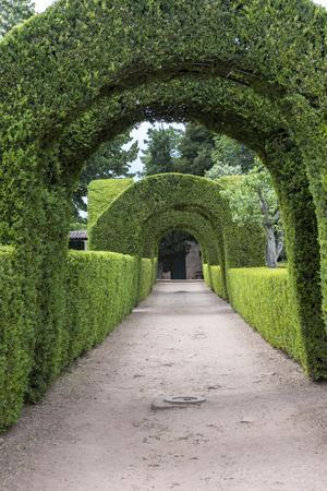 https://imgc.artprintimages.com/img/print/europe-portugal-vila-real-palace-of-mateus-formal-garden_u-l-pypdl40.jpg?p=0