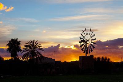Europe, Spain, Majorca, Palm, Windmill, Dusk, Afterglow-Chris Seba-Photographic Print