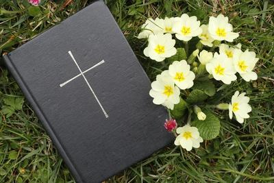 Bible on the grass with primrose at springtime