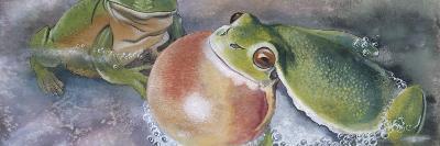 European Tree Frog (Hyla Arborea), Illustration--Photographic Print