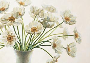 Bouquet di Anemoni by Eva Barberini