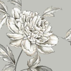 Botanical II by Eva Watts