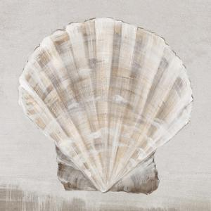 Neutral Shells II by Eva Watts