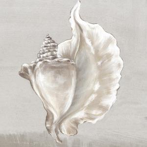 Neutral Shells III by Eva Watts