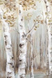 Sunset Birch Forest I by Eva Watts