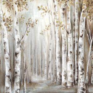 Sunset Birch Forest III by Eva Watts