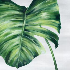 Tropical Leaf II by Eva Watts