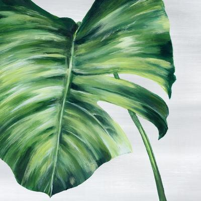 Tropical Leaf II