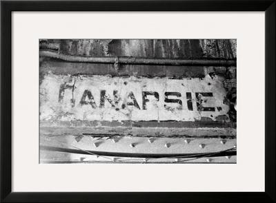 Canarsie by Evan Morris Cohen