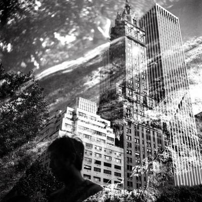 Central Park Double by Evan Morris Cohen