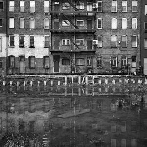 Not Venice by Evan Morris Cohen
