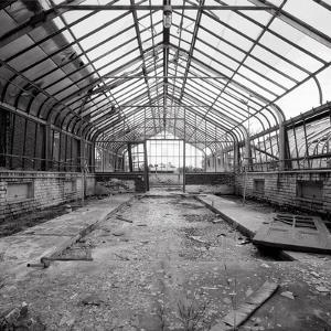 Once a Greenhouse by Evan Morris Cohen