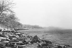 Shoreline by Evan Morris Cohen