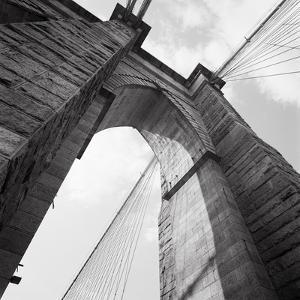 Towering by Evan Morris Cohen