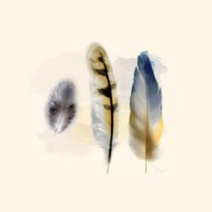 Three Feather Study 2 by Evangeline Taylor