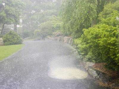 Evaporation Series - Rain Stage (Image 1 of 3)--Photographic Print