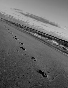 Footprints by Eve Turek