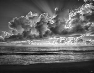 Majestic Morning by Eve Turek