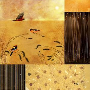 Hooded Orioles by Evelia Designs
