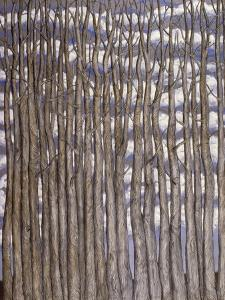 Trees against Clouds, 2009 by Evelyn Williams