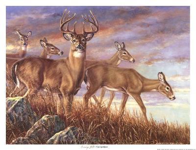 Evening Gold-Carolyn Mock-Art Print