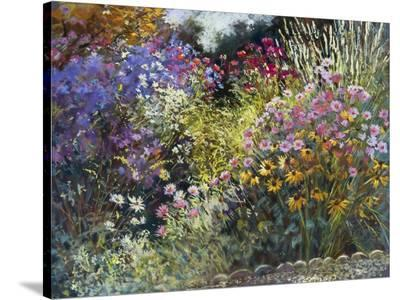 Evening in the Garden-Nel Whatmore-Stretched Canvas Print