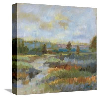 Evening Landscape Study-Libby Smart-Stretched Canvas Print