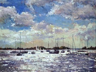 Evening Light, Gulf of Morbihan, 2002-Christopher Glanville-Giclee Print