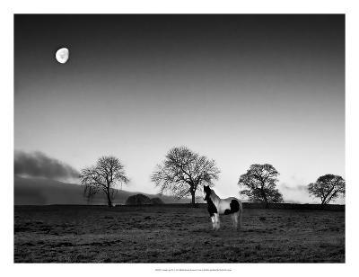 Evening Light IV-Martin Henson-Giclee Print