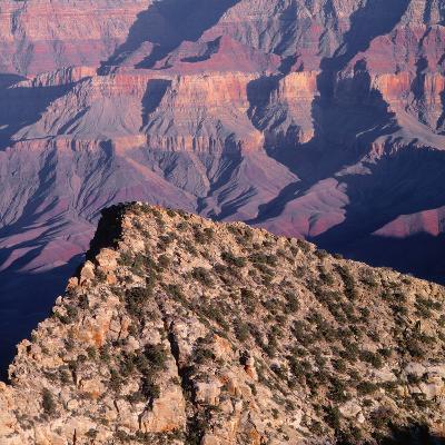 Evening Light on Freya Castle, Grand Canyon National Park-John Barger-Photographic Print