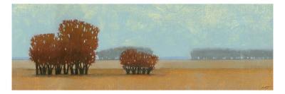 Evening of Culture No Pattern II-Norman Wyatt Jr^-Art Print