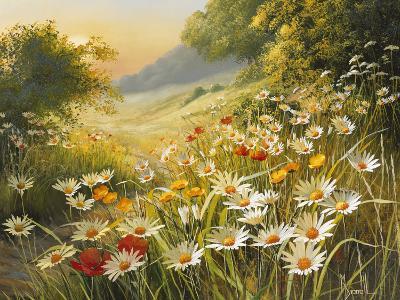 Evening Sun-Mary Dipnall-Premium Giclee Print