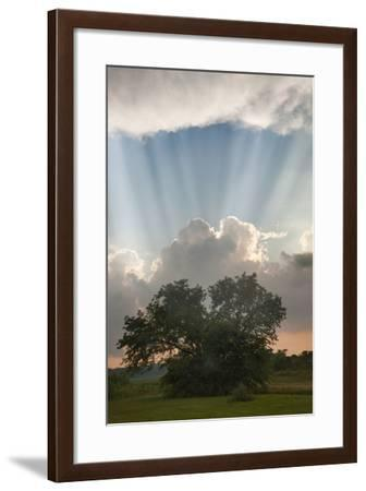 Evening Sunbeams, Sturgis, Michigan '10-Monte Nagler-Framed Photographic Print