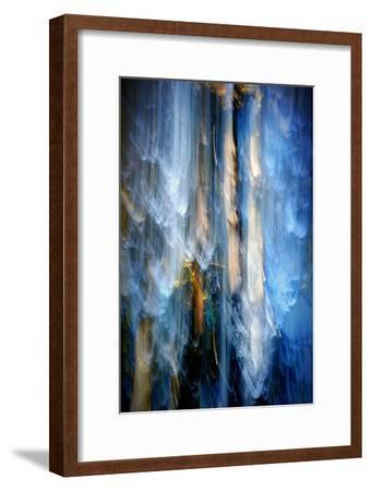 Evening Trees 1-Ursula Abresch-Framed Photographic Print