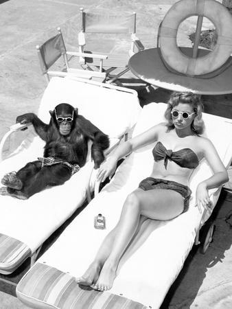 Chimpanzee and a Woman Sunbathing
