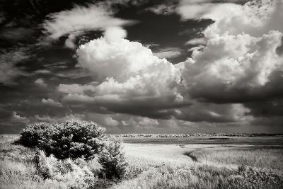 Everette Bay I-Alan Hausenflock-Photographic Print