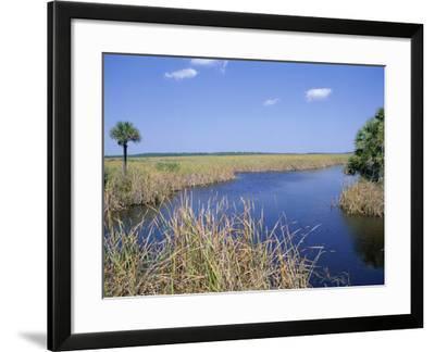 Everglades National Park, Unesco World Heritage Site, Florida, USA-J Lightfoot-Framed Photographic Print