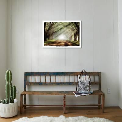 Evergreen Plantation Art Print by Mike Jones | the NEW Art.com
