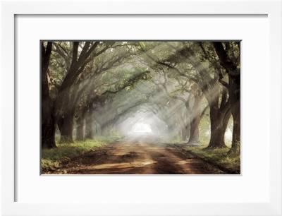Evergreen Plantation Giclee Print Mike Jones Art Com