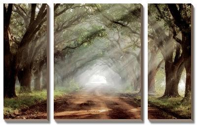 Evergreen Plantation-Mike Jones-Canvas Art Set