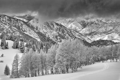 https://imgc.artprintimages.com/img/print/evergreens-and-aspen-trees-in-a-snow-storm-near-gobbler-s-knob-utah_u-l-pxrot70.jpg?p=0