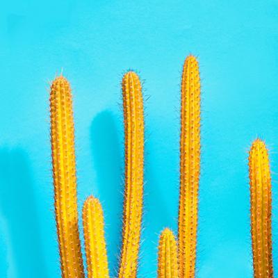 Sweet Summer Style - Cactus on Blue by evgenij918
