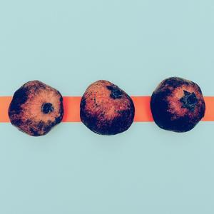 Pomegranates in the Exclusive Design Minimal Style by Evgeniya Porechenskaya