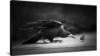 Evil-Richard Bires-Stretched Canvas Print