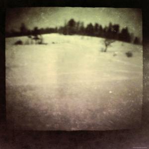 Blurred Field by Ewa Zauscinska